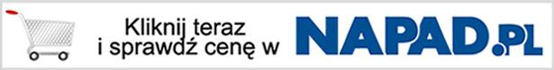 Dobre i tanie rejestratory cyfrowe DVR w NAPAD.pl